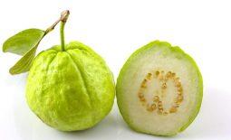 Thành phần dinh dưỡng của ổi đa dạng và tốt cho sức khỏe con người