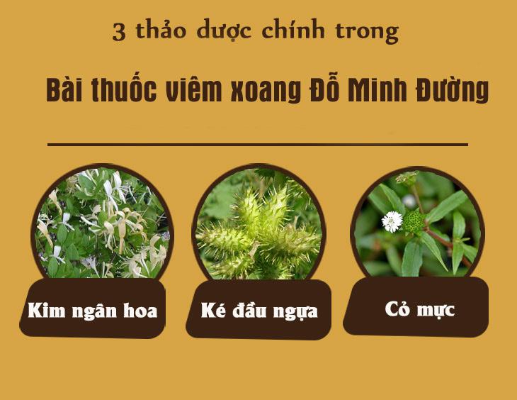 3 loại cây thuốc quý được Minh Tư sử dụng