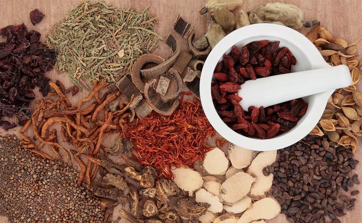 Các bài thuốc Đông y điều trị bệnh viêm tai giữa mạn an toàn, hiệu quả