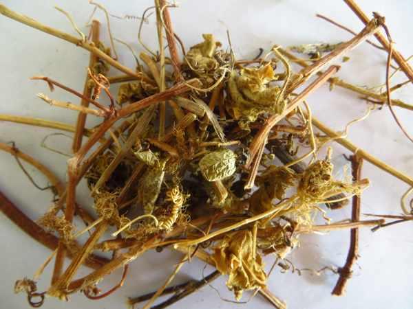 Các bài thuốc đông y điều trị mất ngủ bằng cây lạc tiên