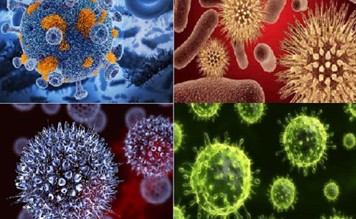 Virus, vi khuẩn là một trong những nguyên nhân gây bệnh viêm tai