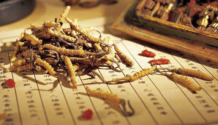 Bài thuốc chữa ho bằng Đông y kết hợp nhiều thảo dược quý