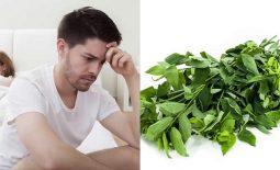 Cách chữa yếu sinh lý bằng rau ngót