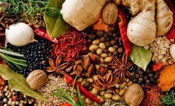 Bài thuốc Đông y trị sỏi thận