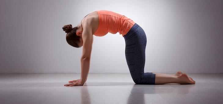 Tập tư thế yoga con mèo hàng ngày để đạt hiệu quả điều trị cao