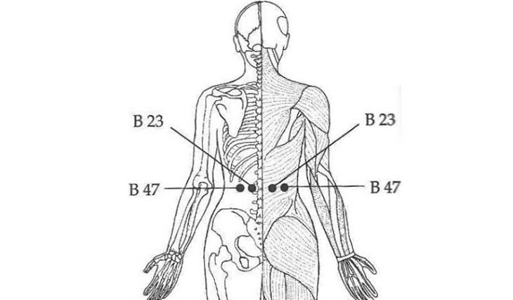 Bấm huyệt thắt lưng tốt cho nam giới bị rối loạn cương dương