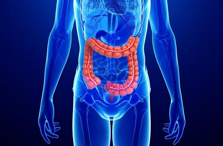 Bệnh crohn là gì? Nguyên nhân, triệu chứng và cách điều trị