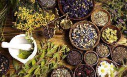 11+ cách chữa bệnh đại tràng tại nhà, hiệu quả và dễ áp dụng