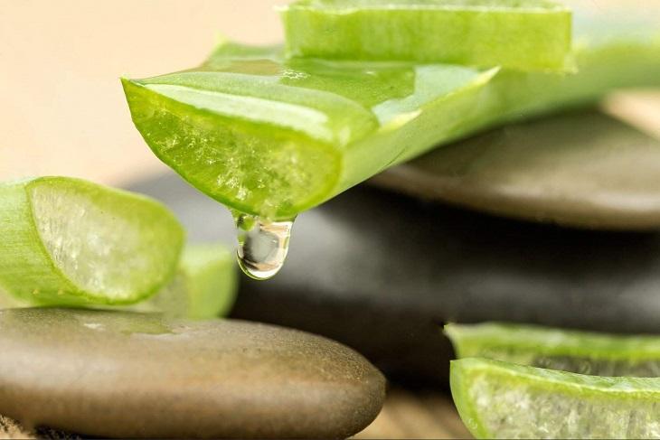 Nha đam ngoài tác dụng làm đẹp còn có khả năng điều trị bệnh ngoài da