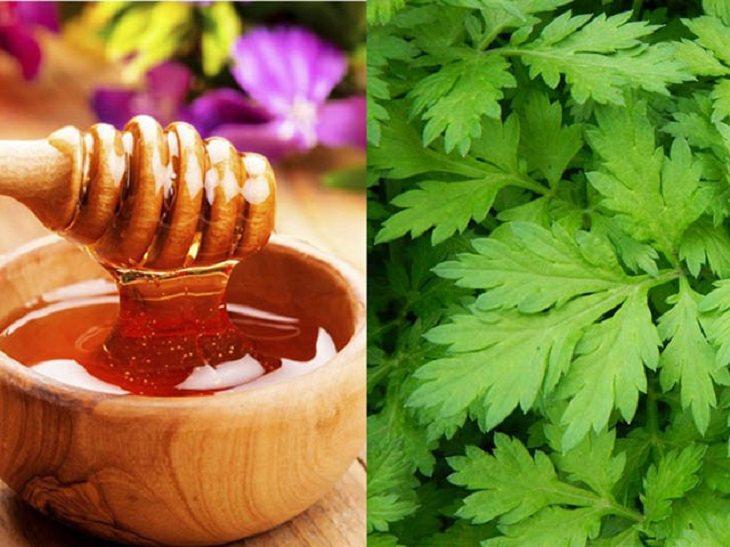 Ngải cứu là loại cây có tính ấm, giúp trừ phong thấp, khắc phục hiện tượng đau nhức ở người già.