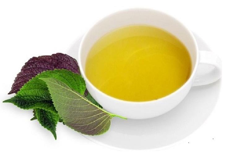 Uống trà tía tô điều trị amidan tại nhà