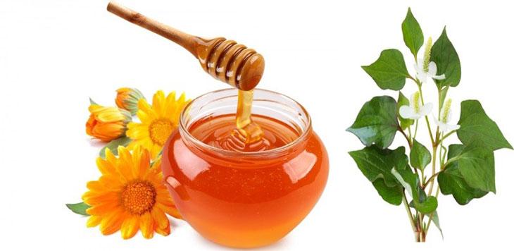 Bài thuốc kết hợp mật ong và rau diếp cá