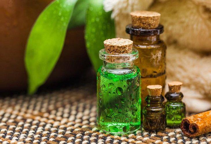 Tinh dầu tràm trà có tác dụng kháng viêm, chống nấm và trị ngứa hiệu quả