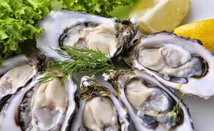 Rối loạn cương dương nên ăn gì? Hàu biển