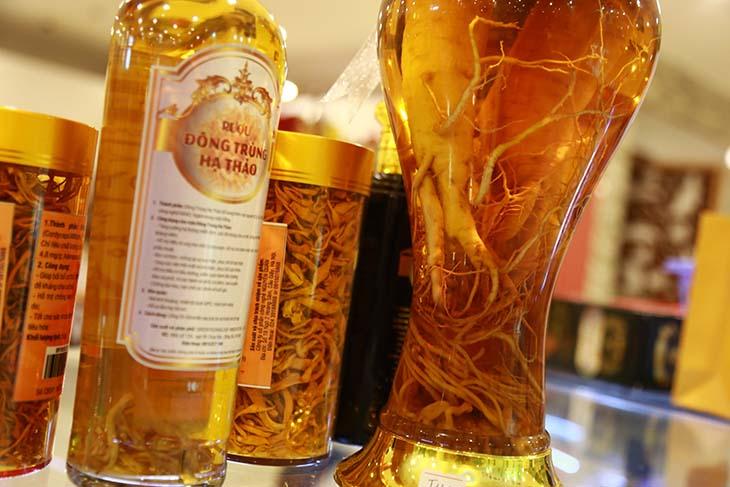 Rượu thuốc từ đông trùng hạ thảo và nhân sâm