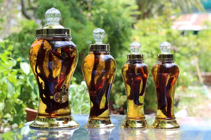 Nhung hươu thuốc ngâm rượu chữa yếu sinh lý, xuất tinh sớm