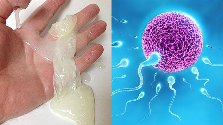 Tinh trùng loãng có mang thai được không còn phụ thuộc nhiều yếu tố