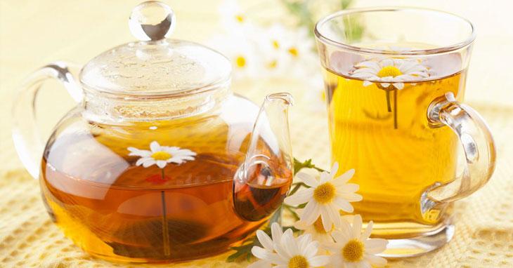 Bài thuốc từ trà hoa cúc