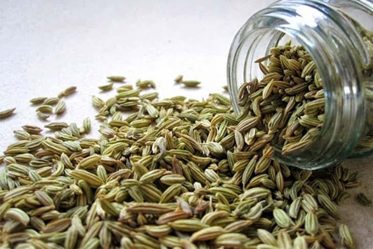 Hạt thì là có công dụng rất tốt trong việc điều trị viêm hang vị dạ dày