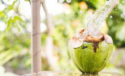 Bị đau dạ dày uống nước dừa được không? Uống có sao không?