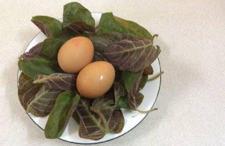 Trứng gà lá mơ tốt cho sức khỏe