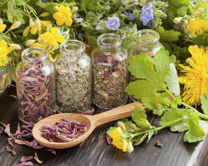 Sử dụng bài thuốc Đông y chữa viêm họng hạt rất an toàn, không lo biến chứng