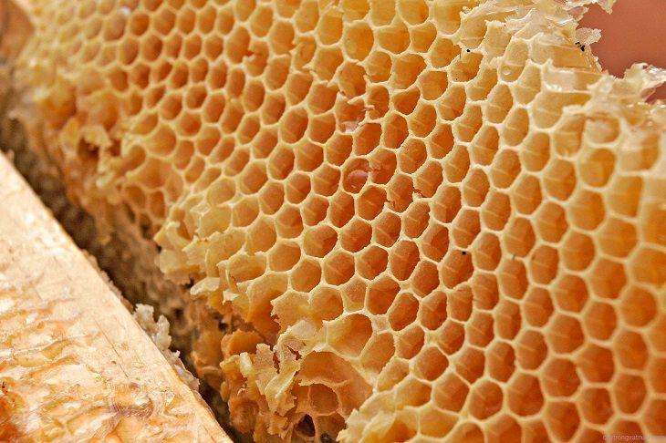 Công dụng của sáp ong với sức khỏe, kháng viêm đã được chứng minh