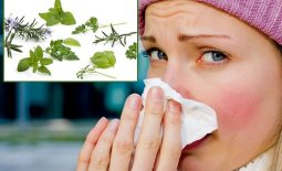 Cách điều trị bệnh viêm mũi xuất tiết xưa và nay
