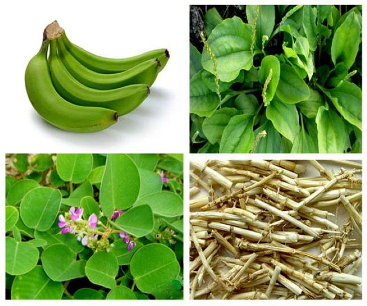 Nên sử dụng chuối xanh kết hợp với các thảo dược khác để điều trị đau dạ dày mạn tính