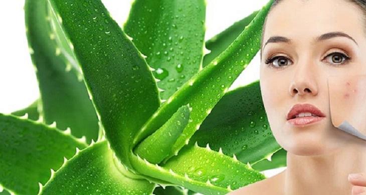 Sử dụng nha đam giúp giảm mẩn ngứa da