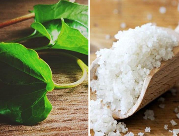 Bên cạnh diếp cá, muối ăn cũng là nguyên liệu có khả năng kháng viêm mạnh mẽ