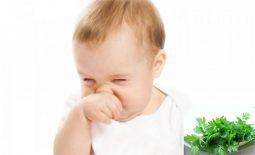 Ngải cứu có nhiều tác dụng kháng khuẩn, làm sạch khoang mũi giúp hô hấp dễ dàng hơn