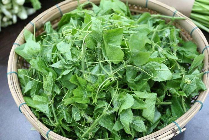 Lá cây lạc tiên có thể chế biến như rau xanh ăn hàng ngày