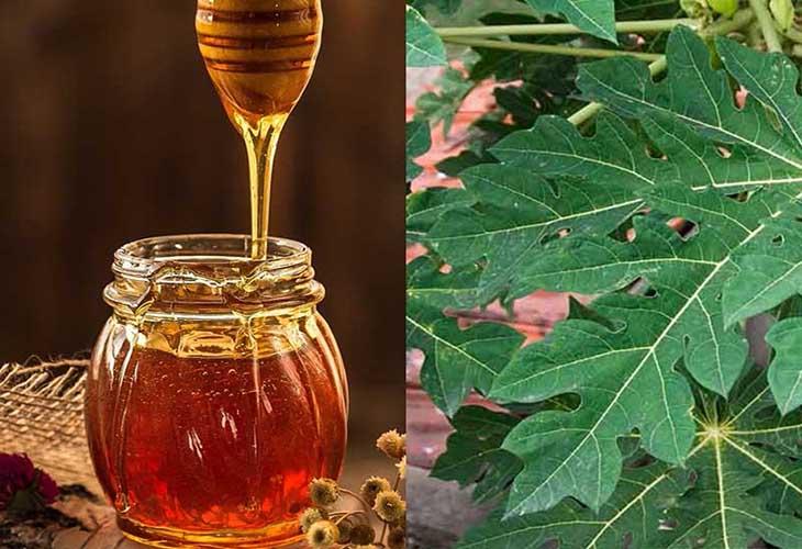 Mật ong cải thiện các triệu chứng viêm dạ dày
