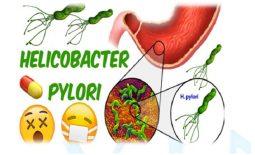 Phác đồ thuốc điều trị vi khuẩn HP có tác dụng tốt trong quá trình điều trị bệnh