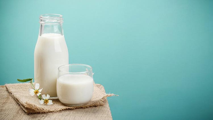 Sữa là một loại thực phẩm bổ sung các chất dinh dưỡng rất dồi dào