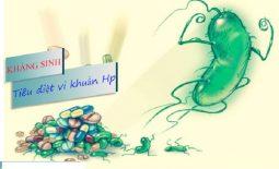 Thuốc điều trị vi khuẩn Hp