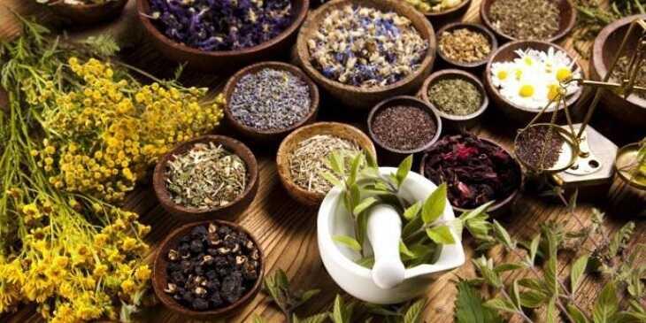 Có rất nhiều bài thuốc đông y trị viêm họng mãn tính hiệu quả