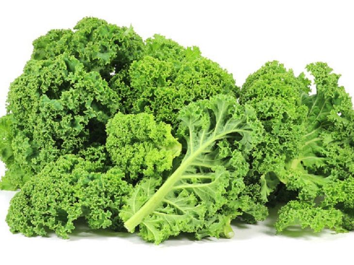 Người bệnh trào ngược dạ dày có nên ăn rau cải xoăn