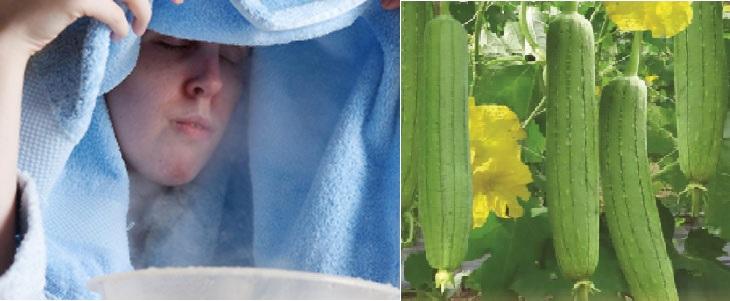 Xông mũi bằng mướp giúp đẩy lùi tình trạng chảy nước mũi