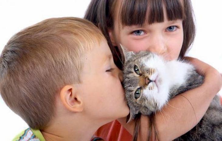 Lông động vật cũng là nguyên nhân gây viêm họng cấp ở trẻ