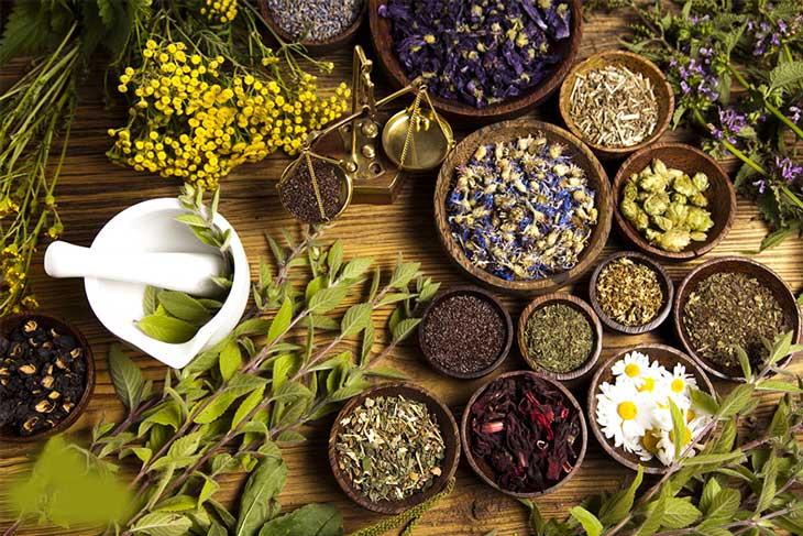 Bài thuốc Đông y chữa rối loạn tiền đình ngoại biên từ gốc, ngăn chặn bệnh tái phát