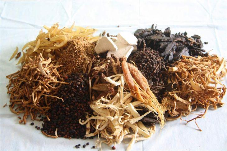 Tam thất kết hợp với các loại thảo dược quý giúp bồi bổ sức khỏe, trị mất ngủ