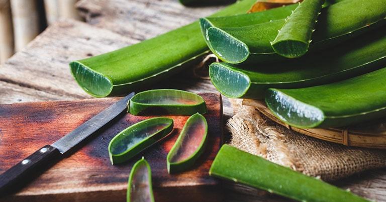 Nha đam giúp cung cấp vitamin, dưỡng chất thúc đẩy phục hồi tổn thương ngoài da