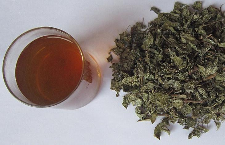 Nước trà pha từ chè dây tiêu diệt khuẩn HP, chữa đau dạ dày tá tràng