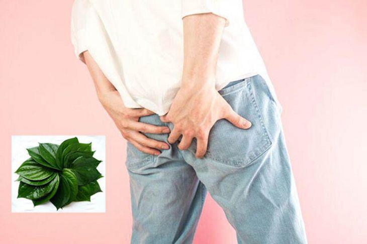 Chữa bệnh bằng lá trầu không chỉ có tác dụng đối với mức độ bệnh nhẹ
