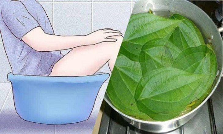 Ngâm rửa nước trầu không giúp giảm đau, giảm ngứa, sát khuẩn