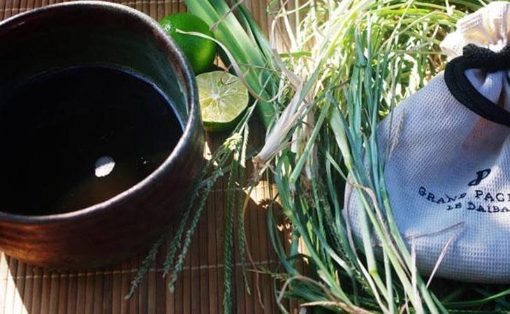 Bài thuốc uống từ cỏ mần trầu và nhân trần điều trị bệnh trĩ hiệu quả