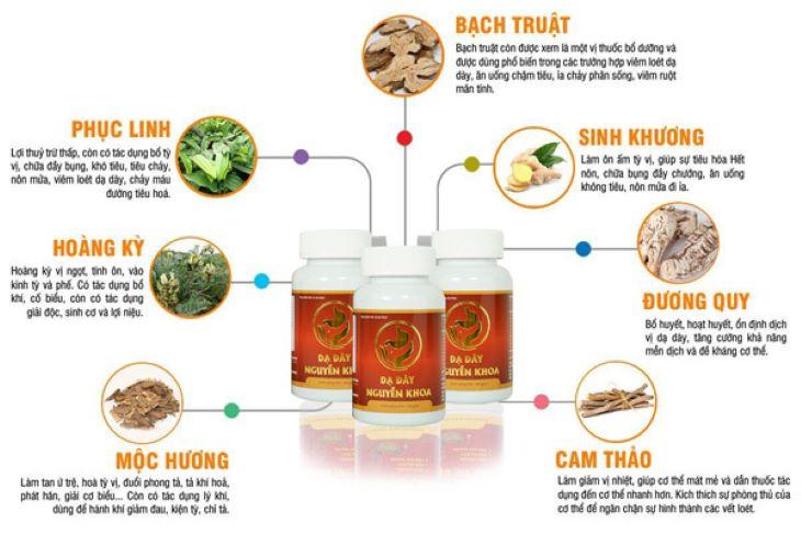 Thành phần chính của thuốc chữa dạ dày Nguyễn Khoa