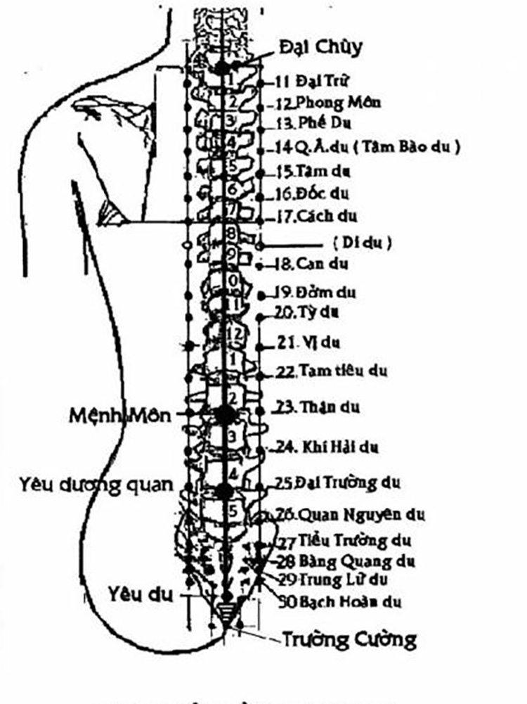 Khi massage điều trị thoát vị đĩa đệm cần chú ý các huyệt đạo quan trọng